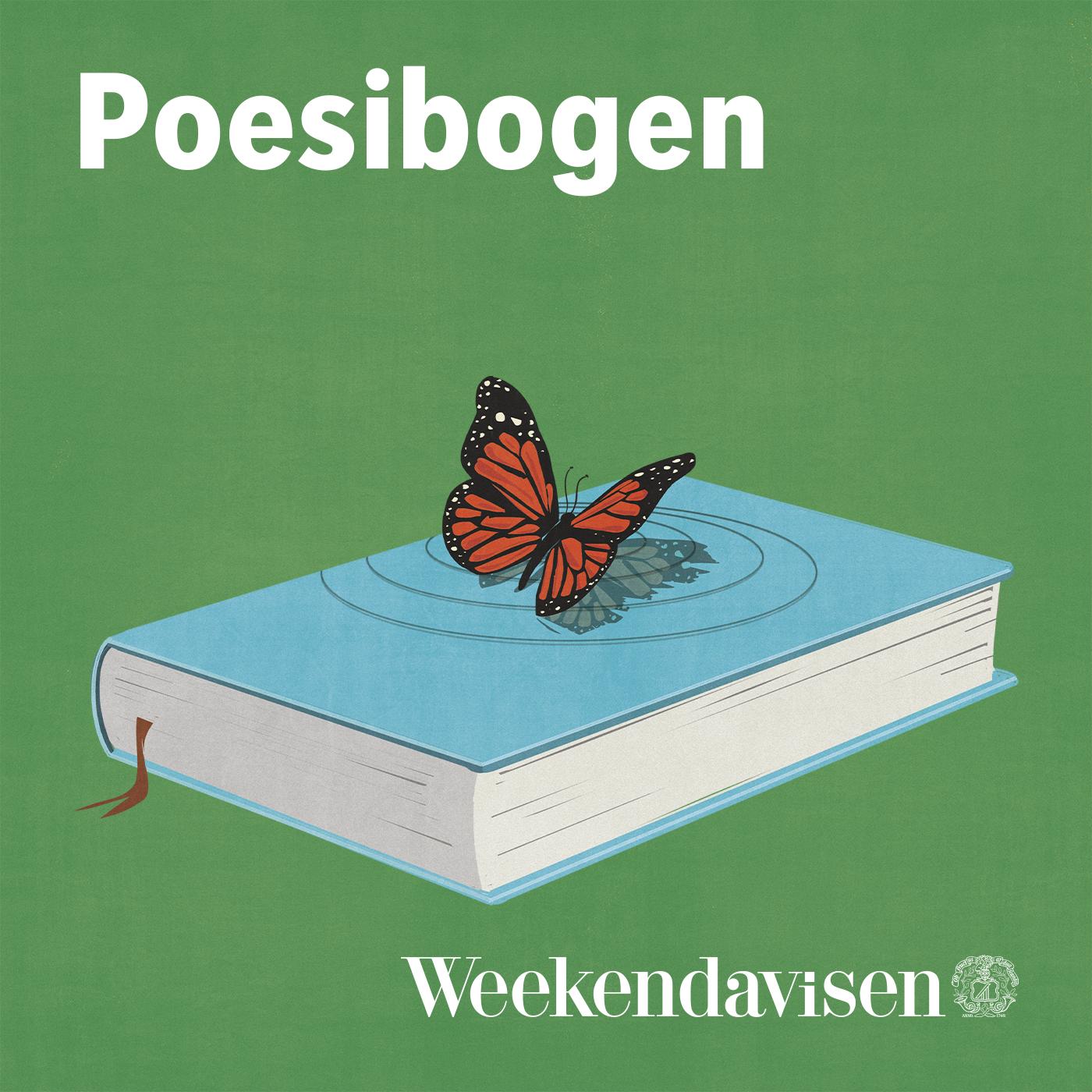 Poesibogen